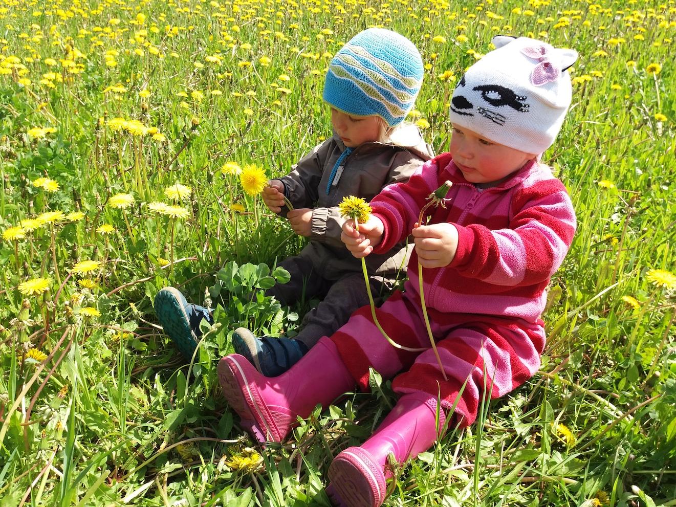 Teispere lapsed põllul